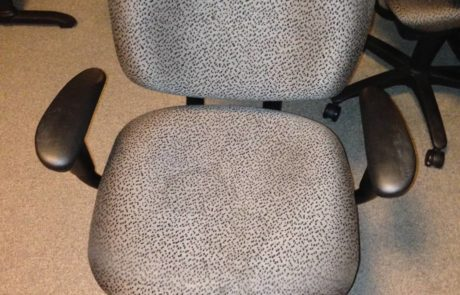 Animal print office chair now on sale at iSpace Office